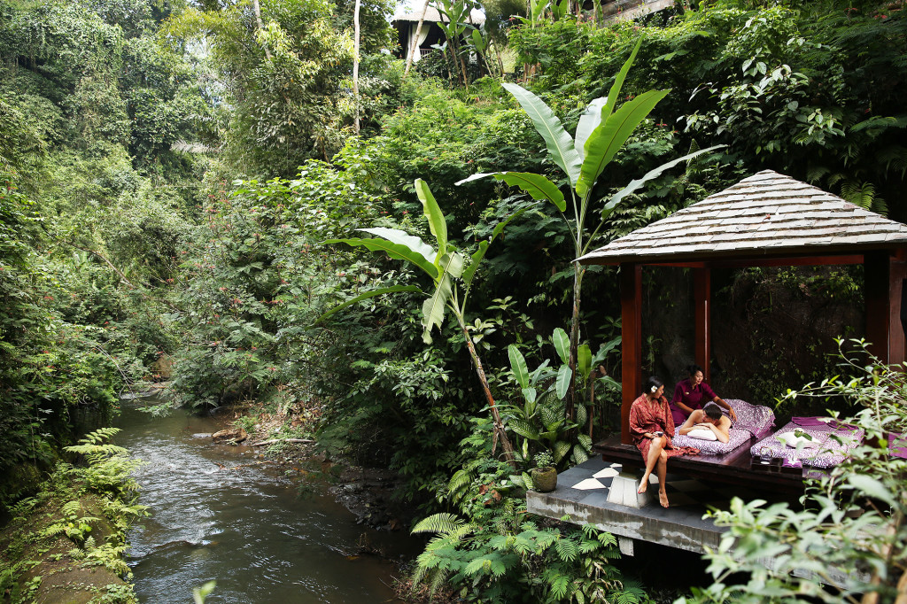 Hanging Gardens SPa by The River St Valentines